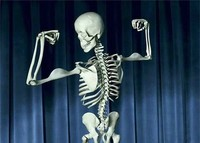 funny skeleton.